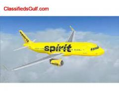 How do I check my reservation with Spirit Airlines?